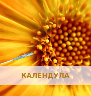 FARMASI24.in.ua - Косметика 13