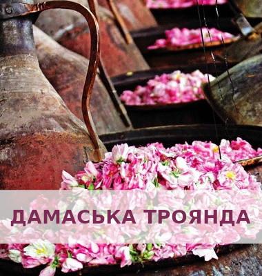 FARMASI24.in.ua - Косметика 10